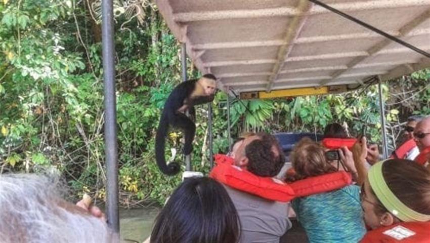 Embera Katuma 2, Visit to Monkey Island and Embera Community from Gamboa Public Pier