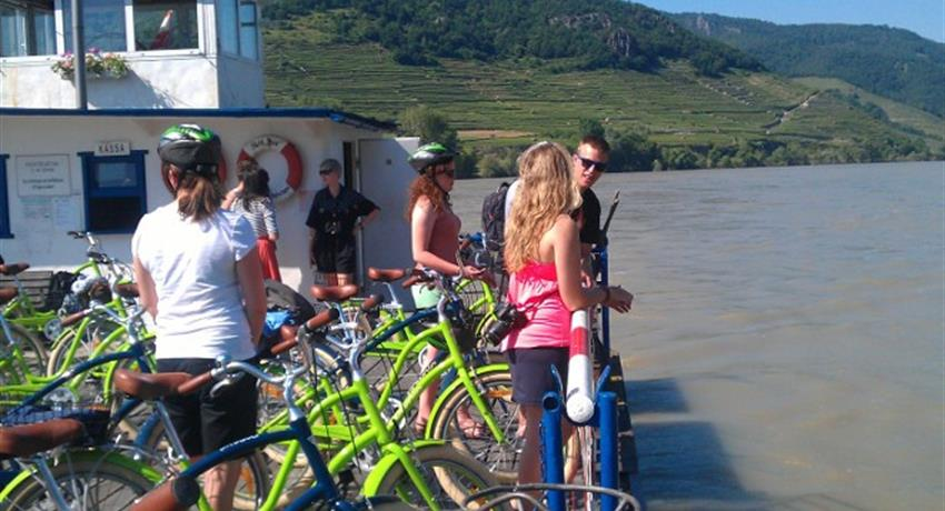 Wachau Valley Wine Tasting Bike Tour tiqy, Wachau Valley Wine Tasting Bike Tour