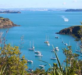 Waiheke Island Day Tour, Walking Tours in New Zealand
