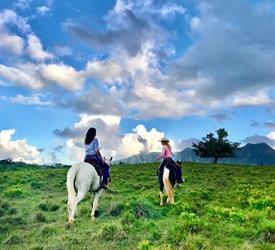 Waterfall Picnic Horseback Ride, Sightseeing Tours  in Hawaii, United States