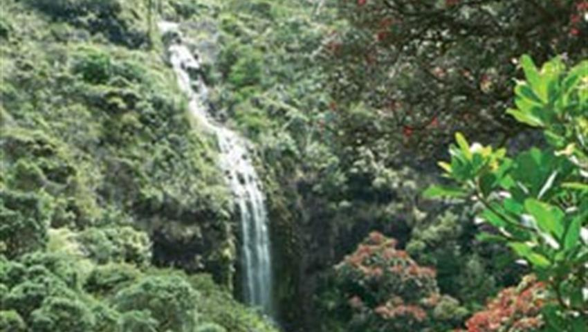 nature tiqy, Waterfalls and Wine Tour