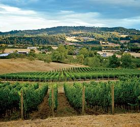 Willamate Valley Day Tour