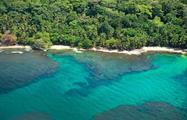 Punta Cahuita - Tiqy, Snorkeling in Cahuita Coral Reef