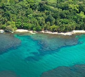 Snorkeling in Cahuita Coral Reef