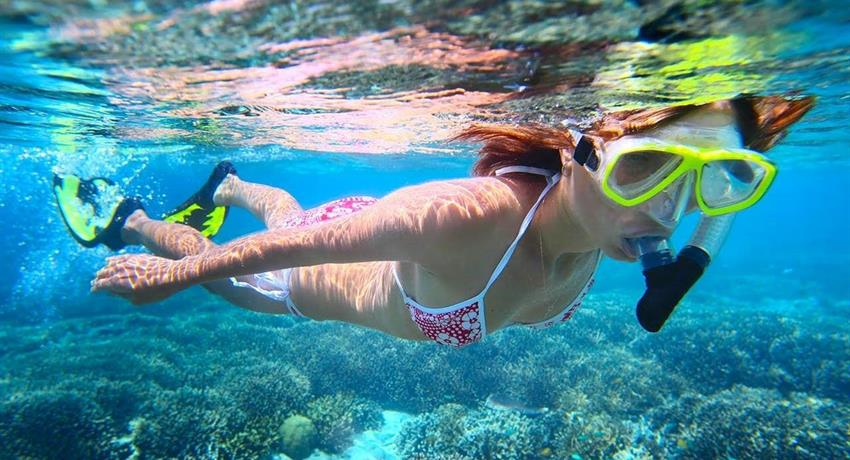 Different places to explore - tiqy, Snorkeling in Cahuita Coral Reef