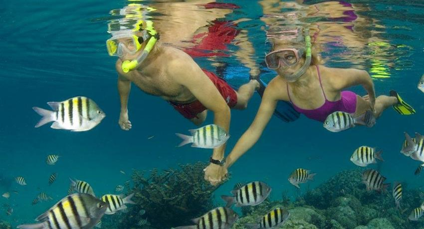 Couple snorkeling together - tiqy, Snorkeling in Cahuita Coral Reef