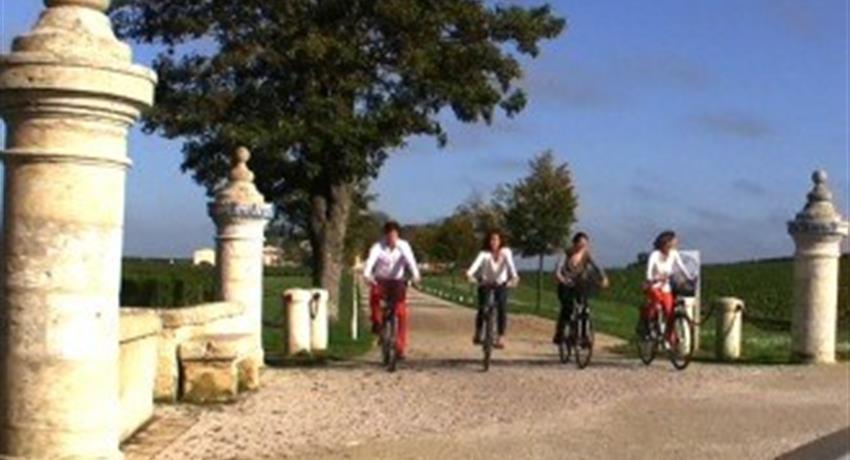 wine and bike tour in st emilion bike, Wine and Bike Tour in St Emilion