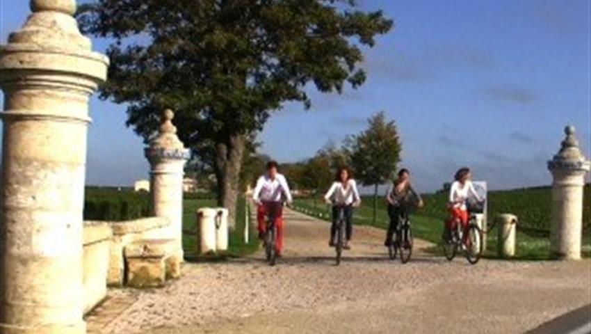 wine and bike tour in st emilion bike, Wine and Bike Tour in St Emilion
