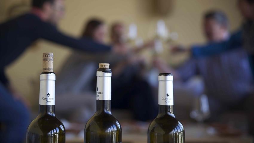 Wine cava and tapas tour 3, Wine, Cava and Tapas Tour