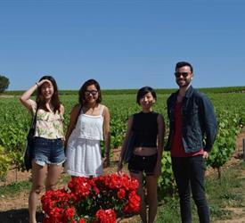 Wine Escapade to Utiel Requena