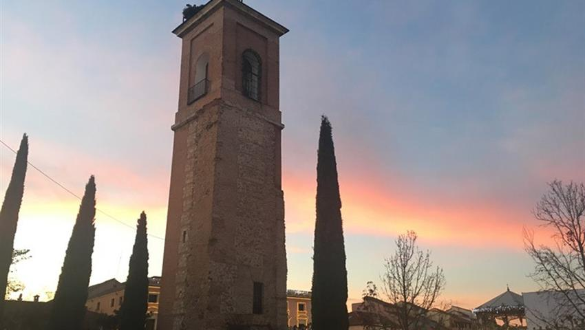 Visit Alcalá de Henares - Tiqy, Winery Tour for Literature Lovers