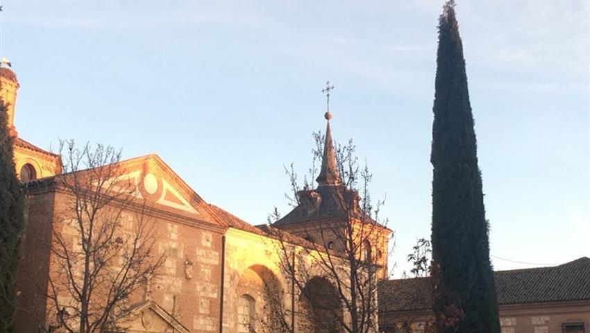 Alcalá de Henares University - tiqy, Winery Tour for Literature Lovers