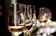 garnacha wine tasting - tiqy, Winery Tour near Madrid and Avila